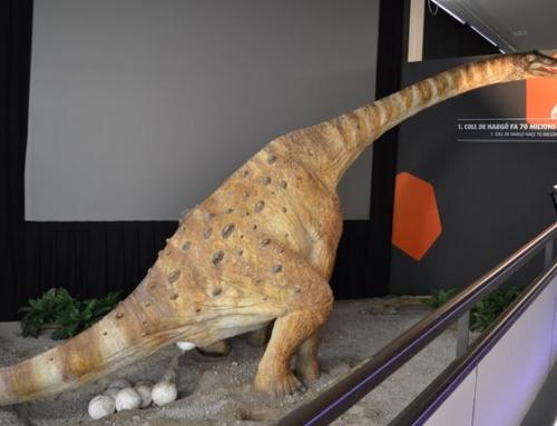 Nova exposició a l'espai Dinosfera a Coll de Nargó